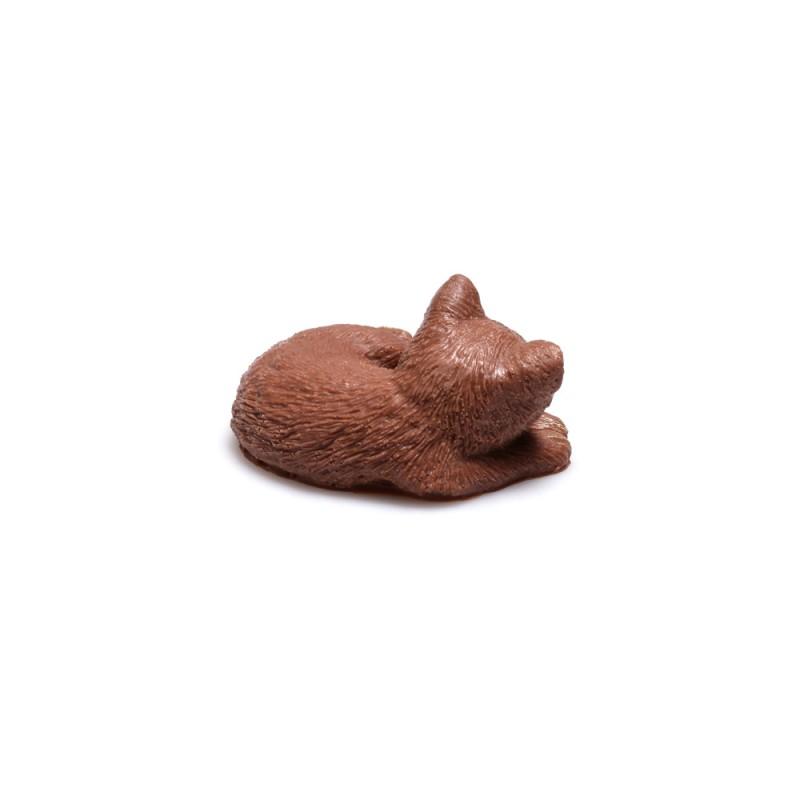 Шоколадная кошечка