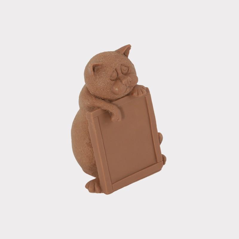 Шоколадный кот-ученик